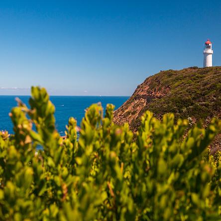 Cape Schanck Lighthouse Reserve - Part II