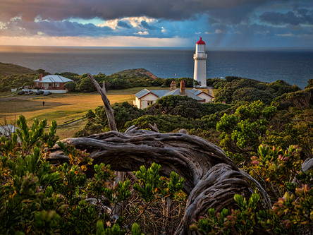 Cape Schanck Lighthouse Reserve - Part I