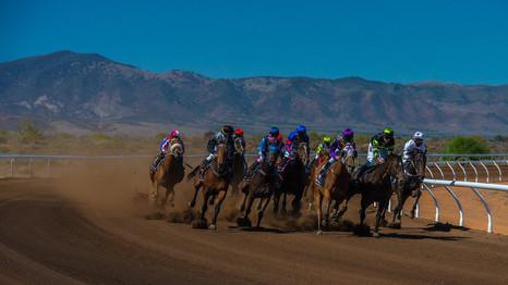 Quorn Races