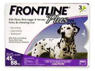 Frontline3