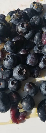 Blueberries are high antioxidants helping reduce damage to cells