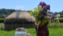 Yurt and flowers