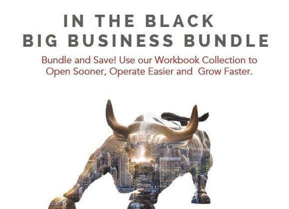 In the Black Big Business Workbook Bundle