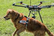 rescue_dron.png