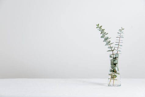 green%20fern%20plant%20inside%20clear%20glass%20vase_edited.jpg