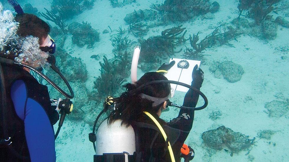 underwater-navigator.jpg