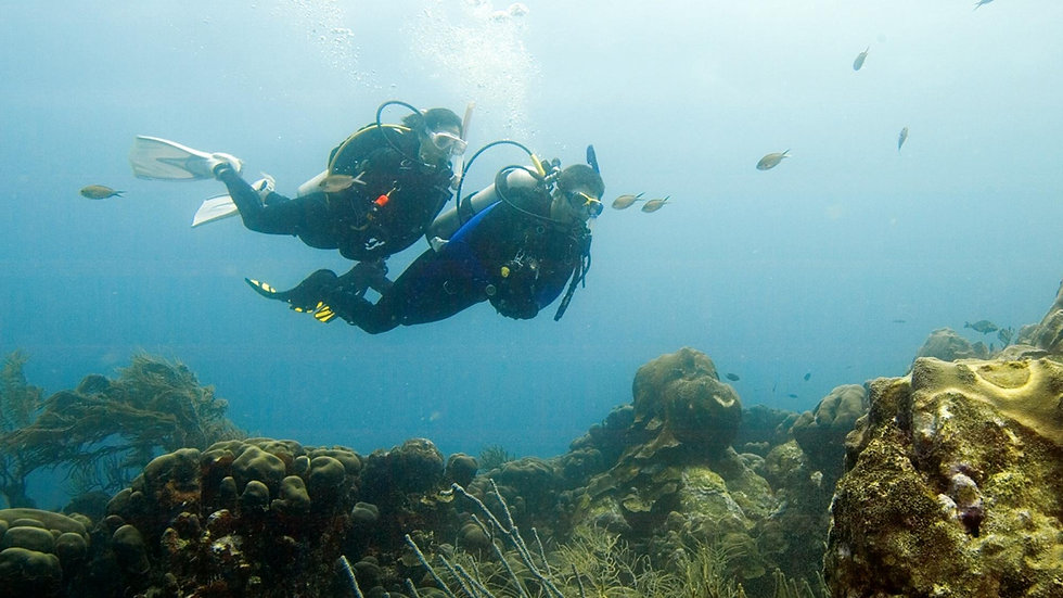 deep-diver.jpg