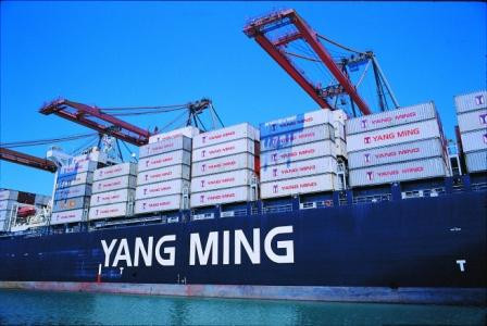 Resultados 2020 de nuestra representada YANG MING.
