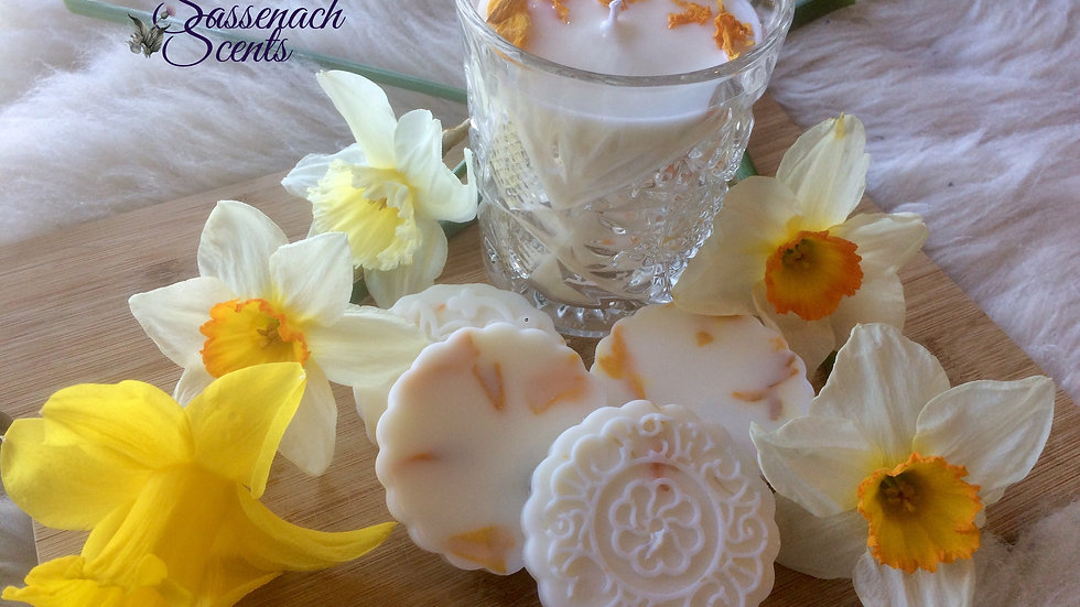 The Wild Daffodils Scents