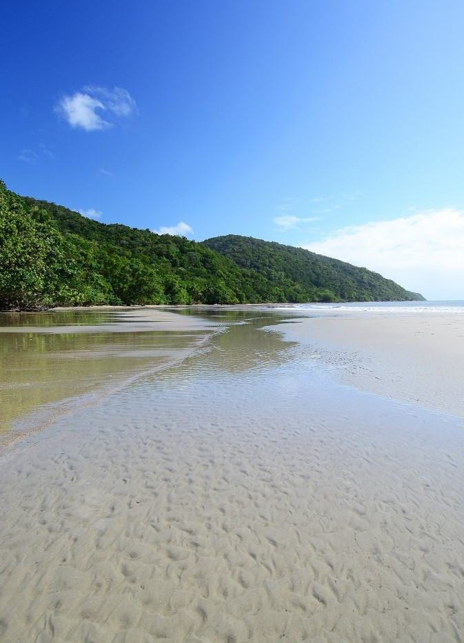 cape-tribulation-tour-daintree-673x1024.