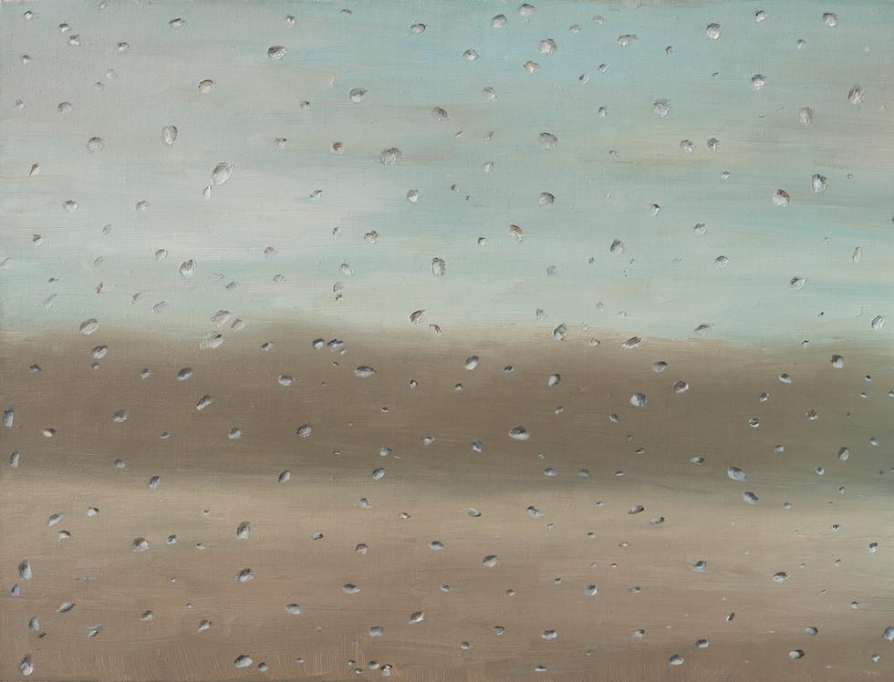 Rainy day landscape •