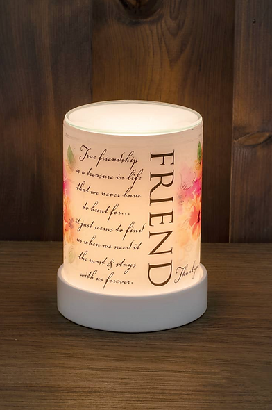 """Friend"" Wax Warmer"