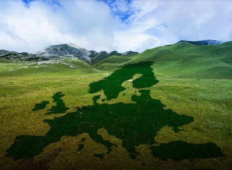 Europe needs a post-corona recovery programme