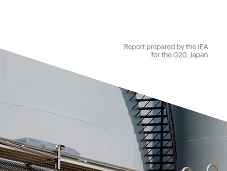 The Future of Hydrogen