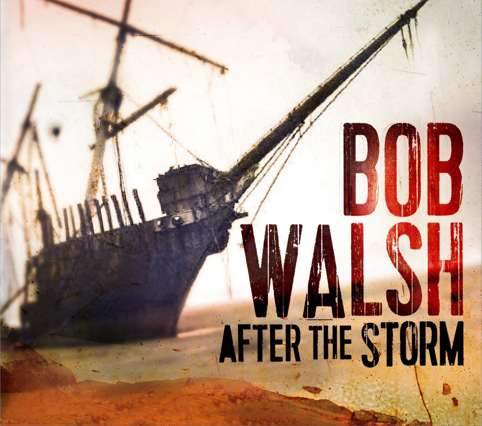 Pochette Album Bob Walsh 2015
