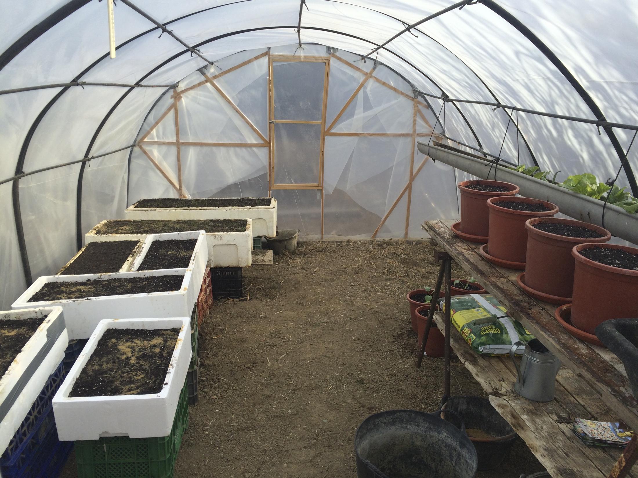 Inside the Tarifa green house