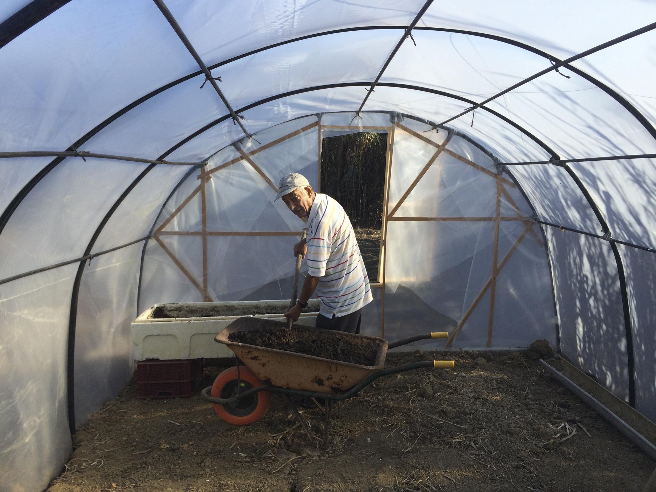 Francisco in the greenhouse Tarifa