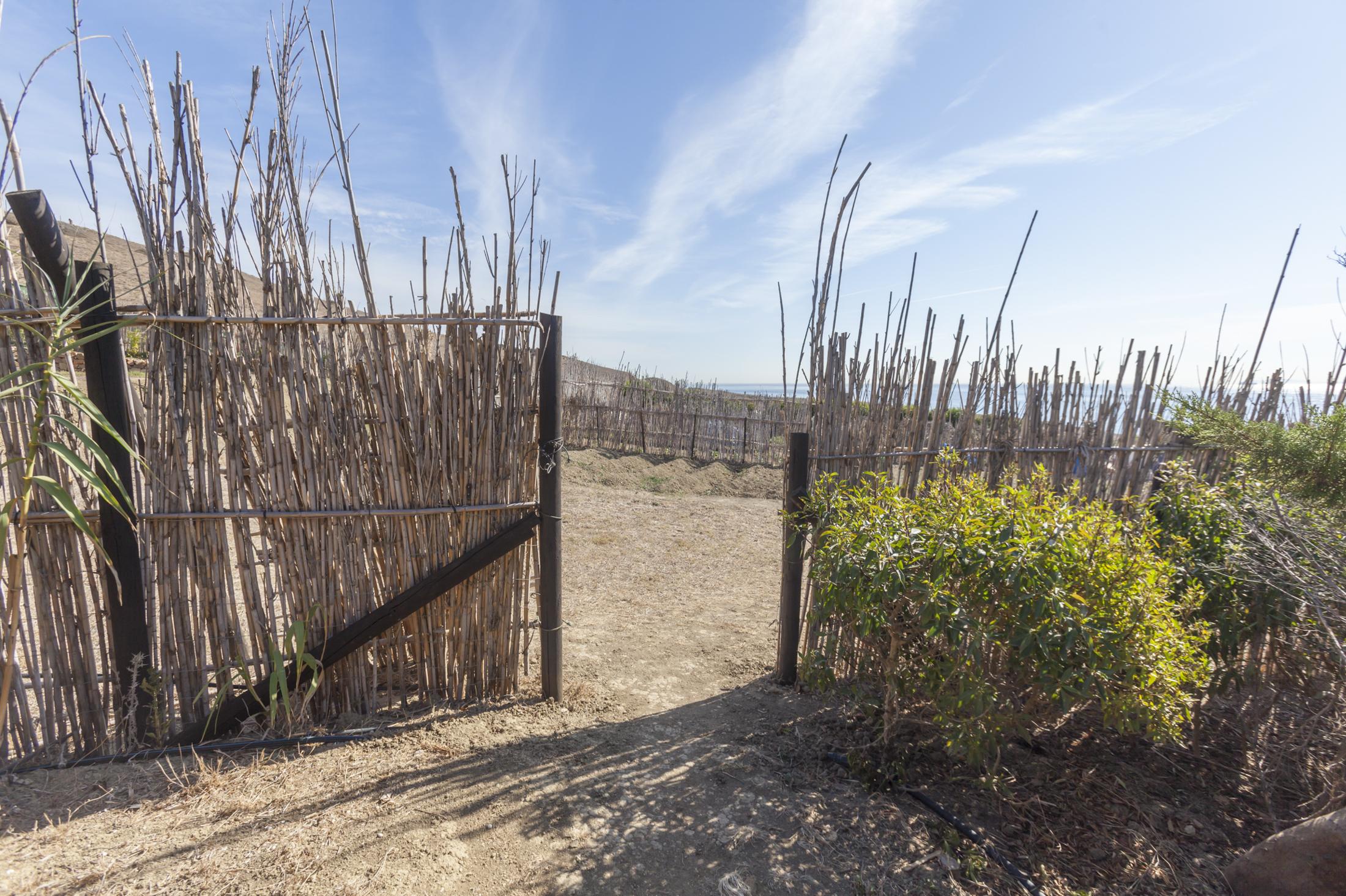 The entrance to the Veggie Garden