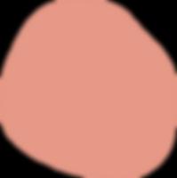 Shape2_salmon@3x.png