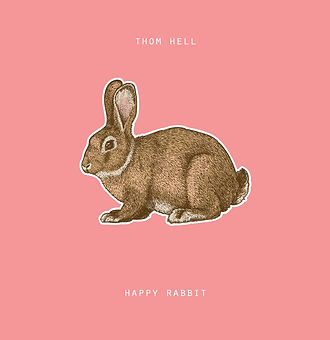 Happy rabbit 2016.jpg