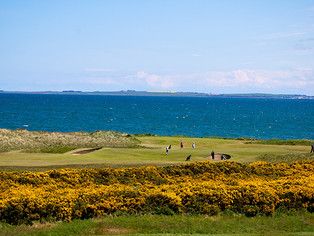 Carr Golf to Host Donald Ross Invitational Tournament at Scotland's Royal Dornoch