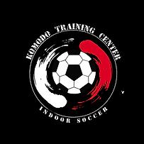 INDOOR-SOCCER-Komodo-Training-center-Log