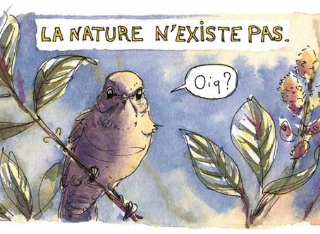 Effondrement de la biodiversité : bientôt nous entrerons dans la forêt pour de bon