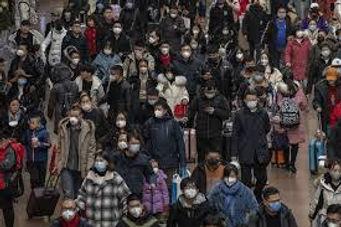 DP Pandemic..jpg