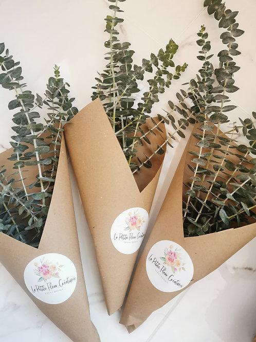 Bouquet D'Eucalyptus Séché / Dry Eucalyptus Bouquet