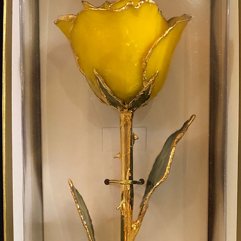24k Gold Trimmed Yellow Rose