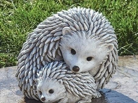 Hedgehog Mom and Baby