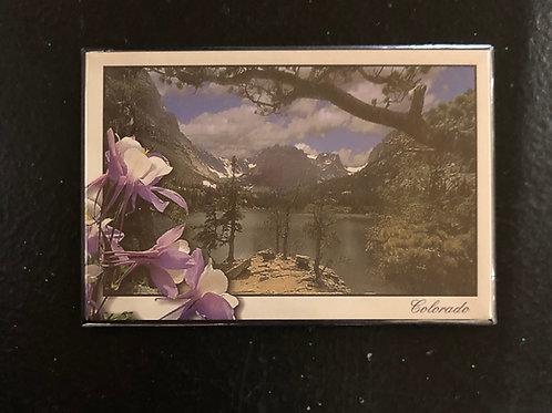 Colorado Magnet ..... Mountain Lake Columbines