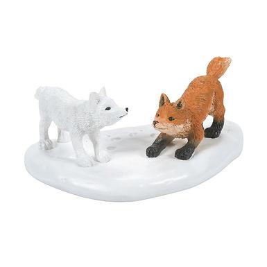 White Christmas Fox Face off