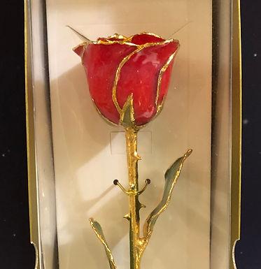 24k Gold Trimmed Red Rose