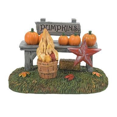 Harvest Pumpkin Stand