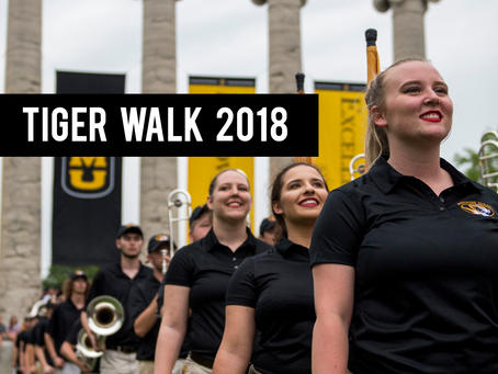 Tiger Walk 2018: Photo Essay