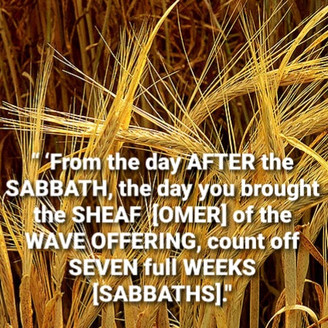 April 27, 2021: NOW is the time to prepare for SHAVUOT!!