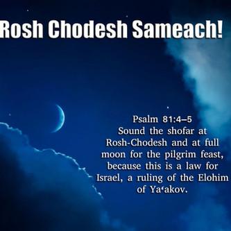 March 14, 2021: Rosh Chodesh Tov - Prepare for PESACH!