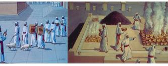 July 3rd, 2021: Parashat Pinchas – What Does HaShem Desire?