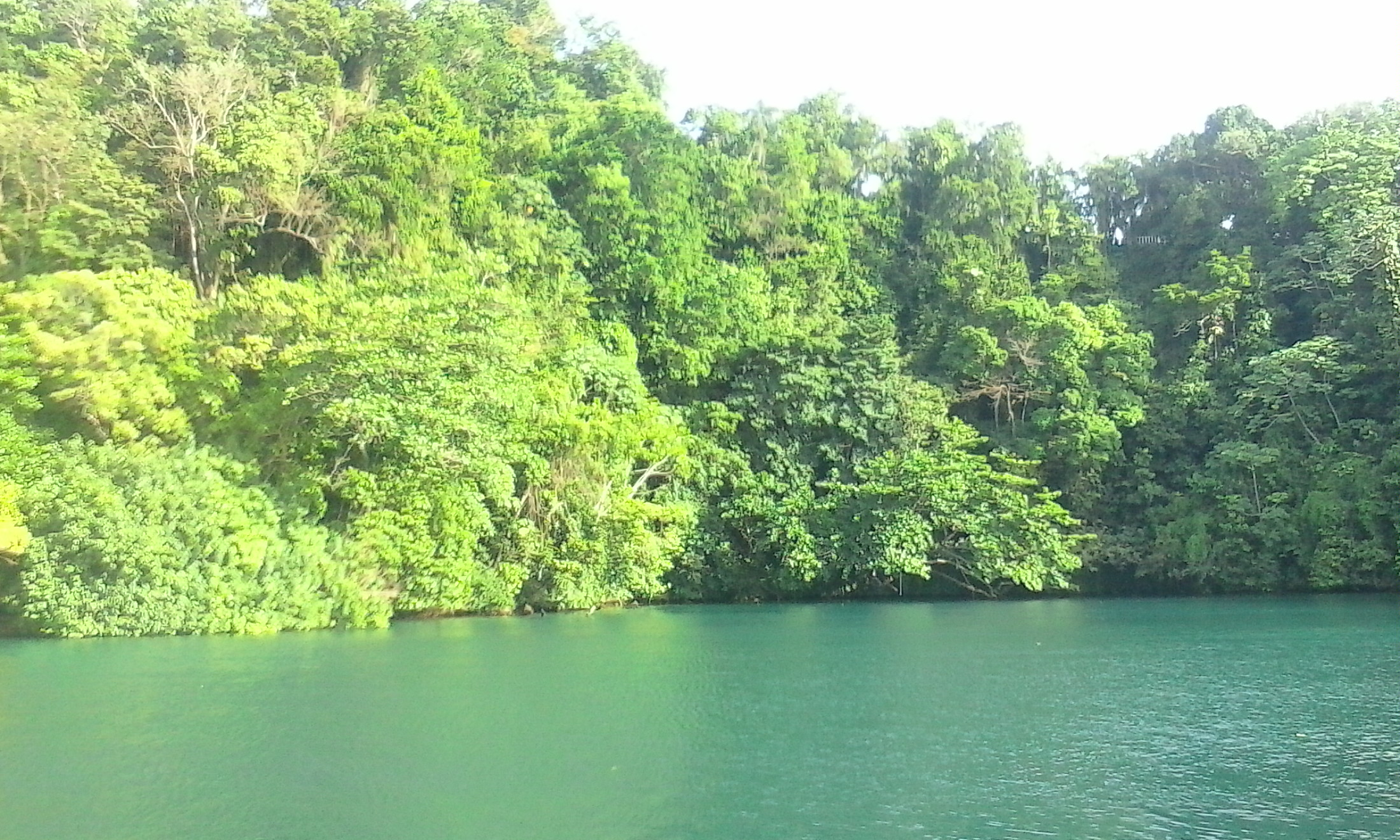 Blue Lagune (4).jpg