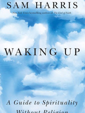 12. Waking Up (Sam Harris)