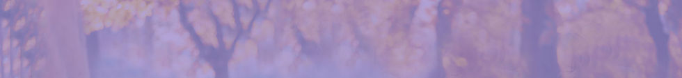 forest-background-mauve.jpg