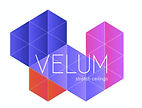 Velum Logo FMHRS Fall 2019.jpg