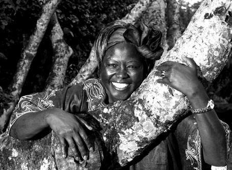 Heed Wangari Maathai's Wisdom