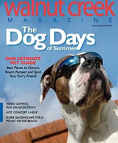news dog days.webp