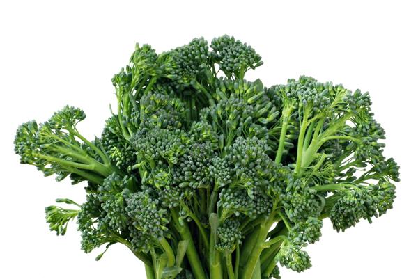 brócolis orgânico