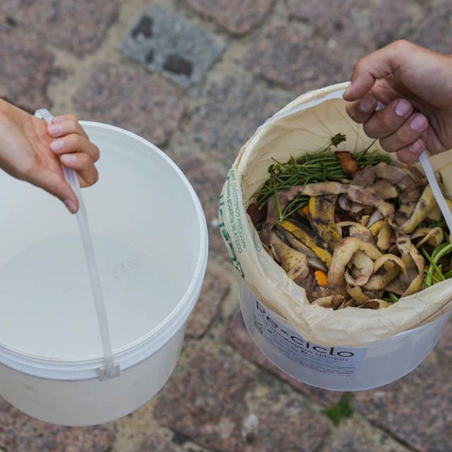 balde compostagem
