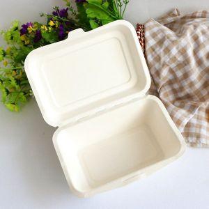 Disposable-Biodegradable-Sugar.jpg
