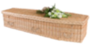 Botany Coffin.png