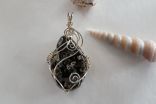 "Turritella Agate ""Deep Connections"" Talisman"